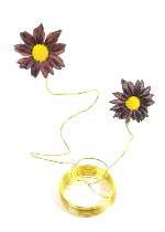 daisy wire gold